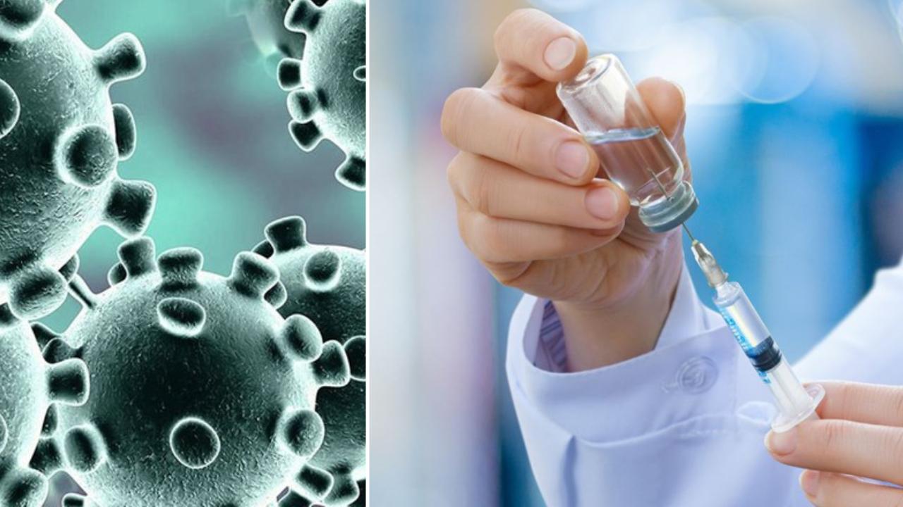 Covid-19 Virüs Aşısı Bulundu İddiası