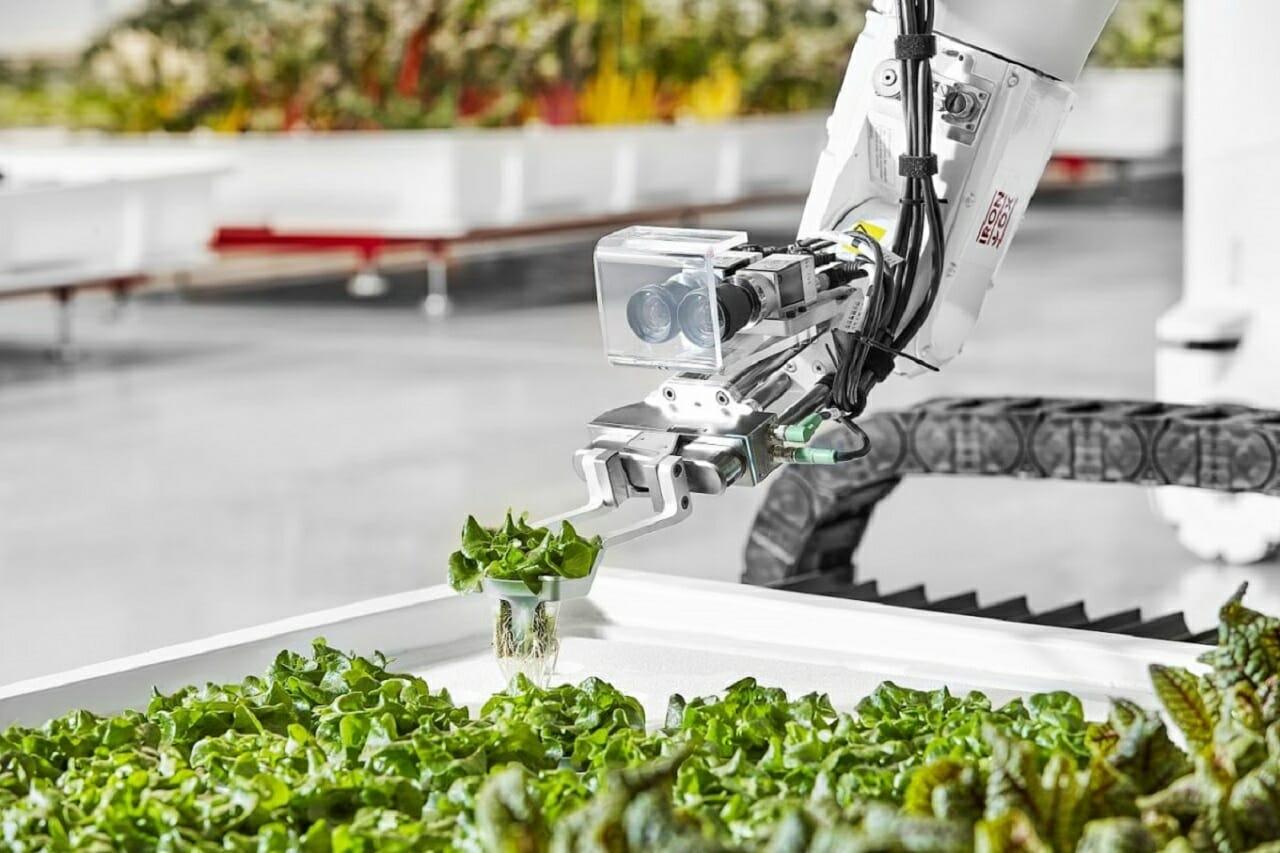 Tarımda İşgücü Sorunu Robot Çiftçilerle Çözebilir Mi?
